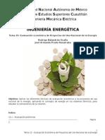 Tema 10 - Evaluacion Economica de Proyectos del Uso Racional de la Energia.docx
