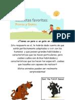 Mascotas P G