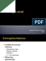 Fisiología renal