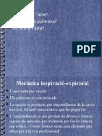Respiracio-fisiologia Windows Powerpoint2