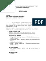 proforma paquitos.docx