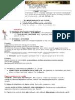 COESÃO TEXTUAL-0205.docx