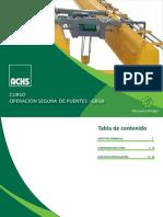238814214 Manual Facilitador Operacion Segura Puente Grua
