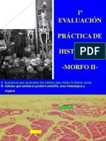 PRIMER PARCIAL PRACTICO 2011 (1).pdf