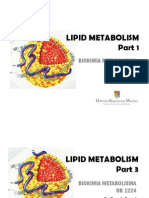 Lipid Metabolism 3