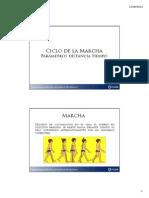 Ciclo de La Marcha Parámetros Distancia Tiempo