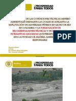 Presentacion Final Pnud Material de Arrastre 25102013