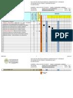 Diagrama de Gantt Est. Descrip. 2015-2