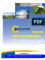 12 Boletin Regional Dic 2013 Huanuco