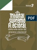 Tribunal Supremo Electoral, Como Ente Rector Del Proceso Electoral - TSE Guatemala, Fascículo 2