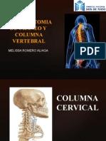 Radioanatomia de Craneo y Columna Vertebral
