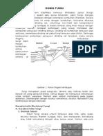 Petunjuk Praktikum Mikologi Revisi 2010