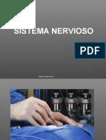 04 Sistema Nervioso