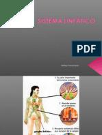 09 Sistema Linfatico