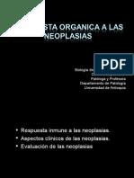 3.Respuesta Orgáncia Neoplasias