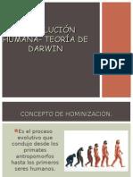 hominizacion_darwinyneodarwin