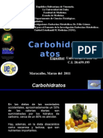 Carbohidratos - Cursode Bioquimica_Jess Roo.