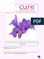 Revista Cure No. 1