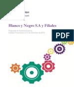 Blanco y Negro s.a. y Filiales 2014 Prop Audit
