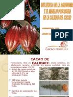 Calidad Integral Del Cacao
