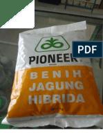 JAGUNG HIBRIDA P21 DAN LEBEL SERTIFIKAT.pdf