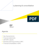 SAP Business Planning and Consolidation Overview