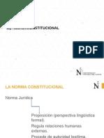 1 22 08 2014 La Norma Constitucional