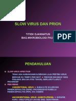 Slow Virus Dan Prion