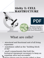 Activity 1 - Cell Ultrastructure