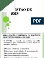 Curso Gestão de SMS 03
