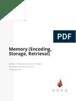 Memory (Encoding, Storage, Retrieval)