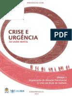 Organização Da Atençao Psicossocial à Crise Em Rede de Cuidado