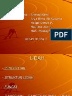PPT tentang Lidah