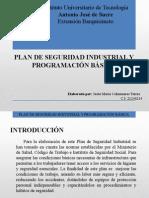Plandeseguridadindustrialyprogramacinbsica 150127215032 Conversion Gate01