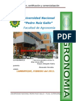 MONOGRAFIA produccion y certificacion.docx