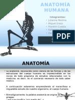 Medicina Legal - Anatomia