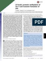 DNA double-strand breaks promote methylation of.pdf
