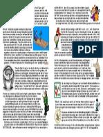 EDA Leaflet