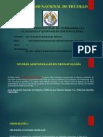 EXPOSICION FUNDAMENTOS DE ENFERMERIA - MONICA.pptx
