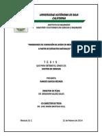 Tesis Ramses García.pdf