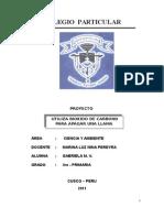 Proyecto Santa Rosa2