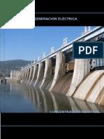 Trabajo Organizacion Industrial Generadoras Electricas