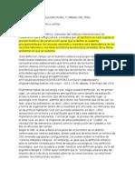 Analisis Sobre La Realidad Rural y Urbana Del Perú