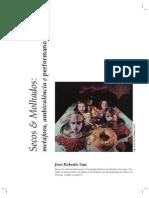 Secos e Molhados - Metáfora, Ambivalência e Performance
