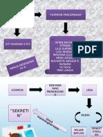 HORMON PENCERNAAN 2.pptx