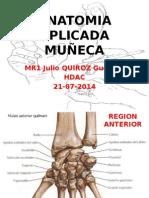 Anatomia Aplicada Muñeca