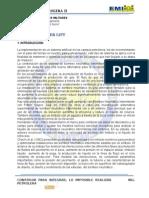 Plumger Lift Informe