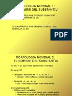 Morfologia Nom Adjectiu Copia