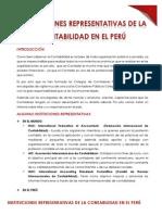 Instituciones representativas de la Contabilidad en el Perú