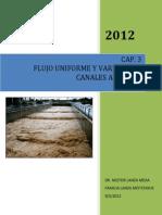 CAP. 3 FLUJO UNIFORME Y VARIADO EN CANALES ABIERTOS nelame.pdf